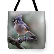 Sring Time Titmouse Tote Bag by Skip Willits