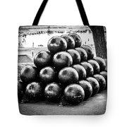 St. Joseph Michigan Cannon Balls Picture Tote Bag by Paul Velgos