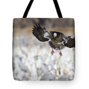 Standing Out Tote Bag by Bryan Keil
