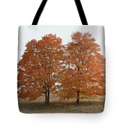 Standing Together Tote Bag by Penny Meyers