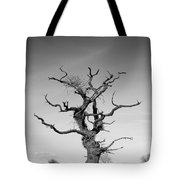 Stark Tree Tote Bag by Pixel Chimp