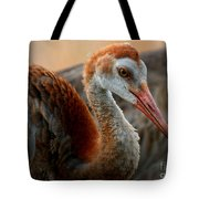 Staying Close To Mom Tote Bag by Carol Groenen