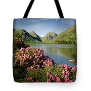 Stillness Of The Mountain Tote Bag by Edmund Nagele