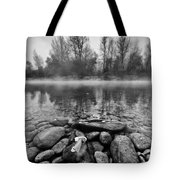 Stones And Trees Tote Bag by Davorin Mance