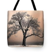 Stories To Tell Tote Bag by Betty LaRue