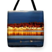 Storm At Sunset Tote Bag by Marysue Ryan