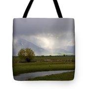 Storm Break Tote Bag by Mike  Dawson