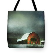 Storm Tote Bag by Theresa Tahara