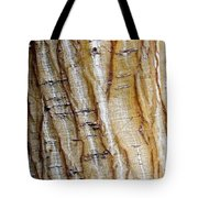 Striped Maple Tote Bag by Steven Ralser