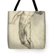 Study for The Last Judgement  Tote Bag by Michelangelo  Buonarroti