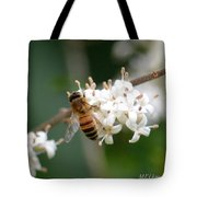 Study Of A Bee Tote Bag by Maria Urso