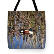 Stunning Shovelers Tote Bag by Al Powell Photography USA