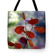 Summer's End Tote Bag by Brian Wallace