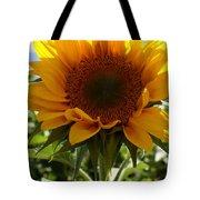 Sunflower Highlight Tote Bag by Kerri Mortenson