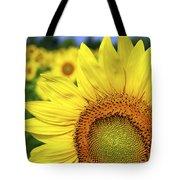 Sunflower In Field Tote Bag by Elena Elisseeva