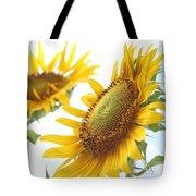 Sunflower Perspective Tote Bag by Kerri Mortenson