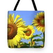 Sunflowers In Field Tote Bag by Elena Elisseeva