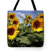 Sunflowers Tote Bag by Kerri Mortenson