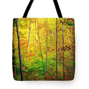 Sunlights Warmth Tote Bag by Frozen in Time Fine Art Photography