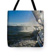 Sunlit Bow Spray Tote Bag by Gary Eason