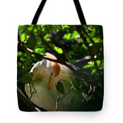 Sunlit Egret Tote Bag by Laura Fasulo