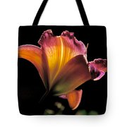 Sunlit Lily Tote Bag by Rona Black