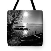 Sunny Day Tote Bag by Davorin Mance