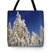 Sunny Winter Day Tote Bag by Aged Pixel