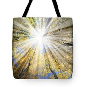 Sunrays In The Forest Tote Bag by Elena Elisseeva