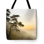 Sunrise In The Mist - D004200a-a Tote Bag by Daniel Dempster