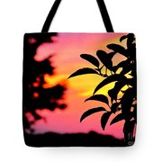 Sunset 365 61 Tote Bag by Tina M Wenger