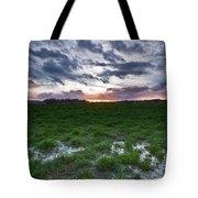 Sunset In The Swamp Tote Bag by Eti Reid