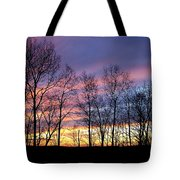 Sunset Of The Century Tote Bag by Christina Rollo