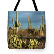 Sunset On The Saguaros Tote Bag by Sandra Bronstein