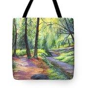 Sunset Stroll  Tote Bag by Carol Wisniewski