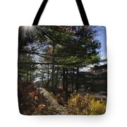 Sunshine Pathway Landscape Tote Bag by Christina Rollo