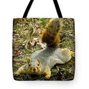 Surprise Mister Squirrel Tote Bag by Shawna Rowe