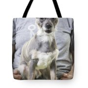 Surprise Tote Bag by Edward Fielding