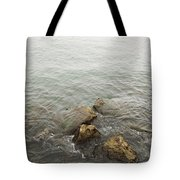 Surrounded Tote Bag by Margie Hurwich