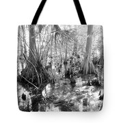 Swampland Tote Bag by Carey Chen