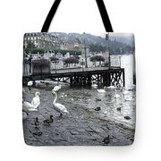 Swans And Ducks In Lake Lucerne In Switzerland Tote Bag by Ashish Agarwal