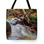 Swept Away Tote Bag by Sharon  Talson