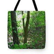 Swirled Forest 1 - Digital Painting Effect Tote Bag by Rhonda Barrett