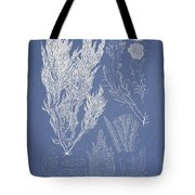 Symphocladia linearis Tote Bag by Aged Pixel