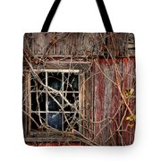 Tangled Up In Time Tote Bag by Lois Bryan