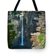 Taughannock Falls Tote Bag by Christina Rollo