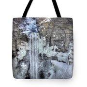 Taughannock Falls Tote Bag by Lori Deiter