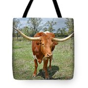 Texas Longhorn Tote Bag by Christine Till