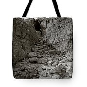 The 23rd Psalm Tote Bag by Charles Dobbs