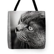 The Ambush Tote Bag by Laura Melis